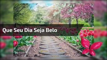Bom Dia Gospel - Que Seu Dia Seja Belo Como Um Jardim Repleto De Flores!