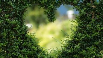 Bom Dia Mensagem De Quinta-Feira - O Amor De Deus É Como O Vento!