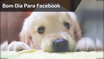 Bom Dia Para Facebook Com Mensagem De Melina Sacia Isa, Compartilhe!