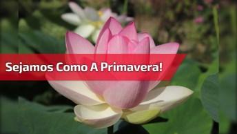 Bom Dia Primavera, Envie Para Amigos Que Amam A Chegada Da Primavera.