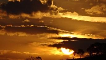 Bom Dia Sexta-Feira! Que Deus Abençoe Seu Dia, Que Ele Seja Cheio De Paz!