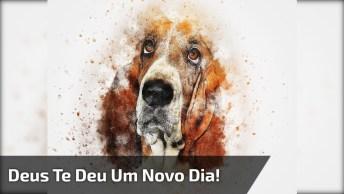 Bom Dia, Sorria, Deus Te Deu Um Novo Dia, Mensagem Para Facebook!