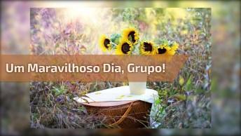 Mensagem Bom Dia Grupo De Whatsapp, Tem Todos Um Maravilhoso Dia!
