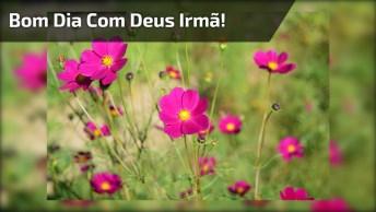 Mensagem Bom Dia Irmã! Que Deus Abençoe Seu Caminho, E Te Proteja De Todo Mal!