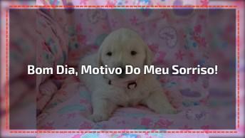 Mensagem De Amor Com Bom Dia, Envie Para Uma Pessoa Especial!
