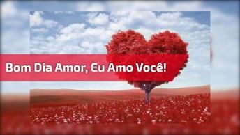 Mensagem De Bom Dia Amor Para Whatsapp, Envie E Mude O Dia Da Pessoa Amada!