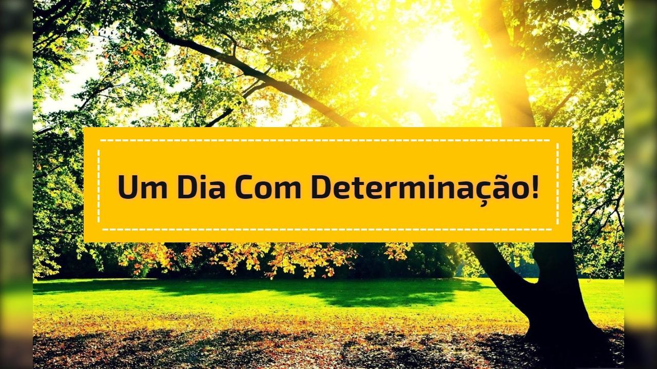 Um dia com determinação!