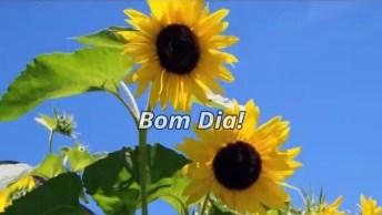 Mensagem De Bom Dia Com Flores, O Desejo Atrai E A Fé Realiza!