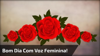 Mensagem De Bom Dia Com Voz Feminina, Escute Com Coração Aberto!
