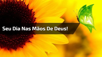 Mensagem De Bom Dia, Entregue Seus Dias Nas Mãos De Deus!
