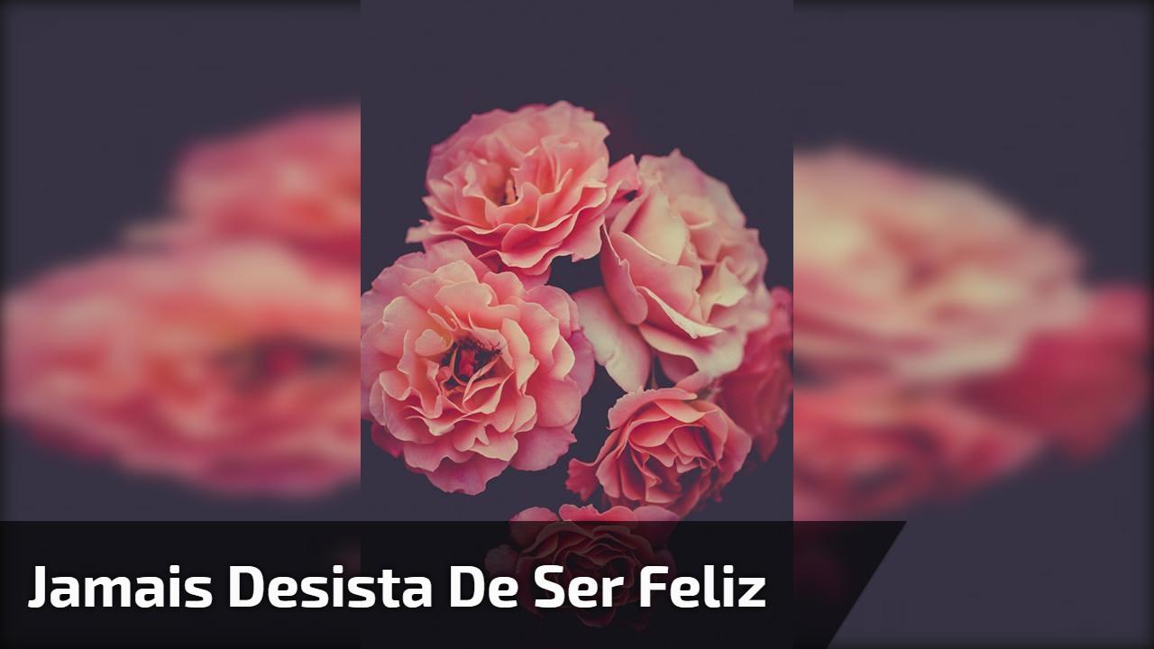 Mensagem de Bom Dia linda de domingo, jamais desista de sua felicidade!!!