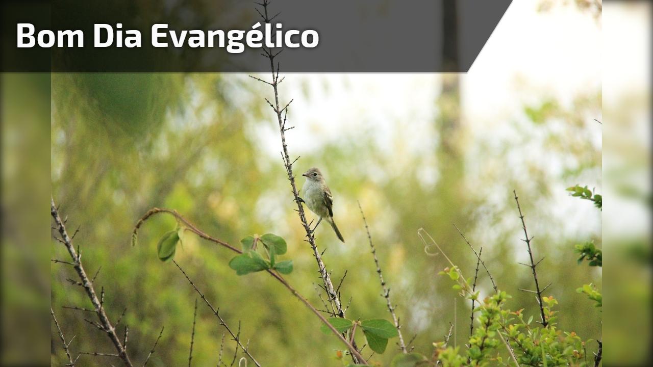 Bom Dia evangélico
