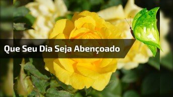 Mensagem De Bom Dia Para Amigo Ou Amiga! Que Seu Dia Seja Abençoado!