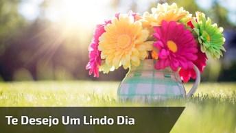 Mensagem De Bom Dia Para Amigos E Amigas! Desejo Um Lindo Dia Para Você!