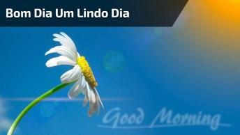 Mensagem De Bom Dia Para Amigos! Sorria Sempre, O Sorriso Muda Tudo!