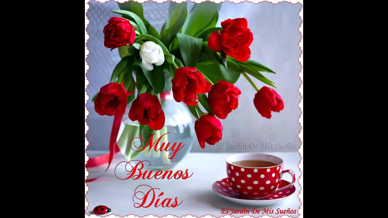 Mensagem De Bom Dia Com Rosas Vermelhas. Que Nosso Dia