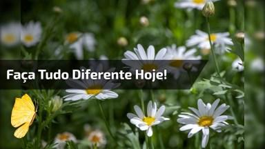 Mensagem De Bom Dia Para Compartilhar Com Seus Amigos E Amigas Do Facebook!