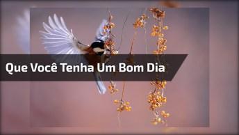 Mensagem De Bom Dia Para Enviar A Todos Amigos E Amigas Do Whatsapp!