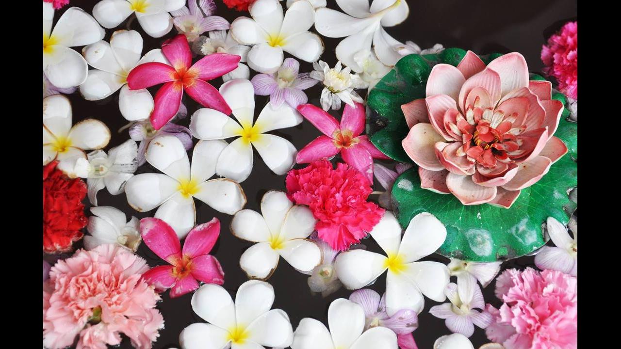 Mensagem de Bom Dia quarta-feira com flores! Vá em busca de sua felicidade!!!