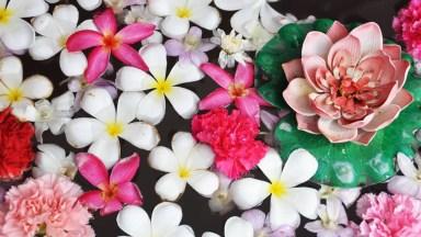 Mensagem De Bom Dia Quarta-Feira Com Flores! Vá Em Busca De Sua Felicidade!