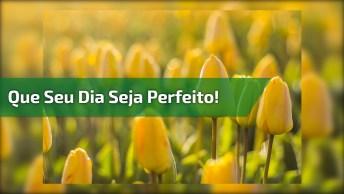 Mensagem De Bom Dia Quarta-Feira! Que Seu Dia Seja Perfeito!