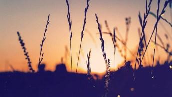 Mensagem De Bom Dia Segunda Evangélica. As Bençãos Tem Hora Marcada Pra Chegar!