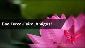 Mensagem De Bom Dia Terça-Feira Amigos! Que Deus Abençoe Cada Um De Vocês!