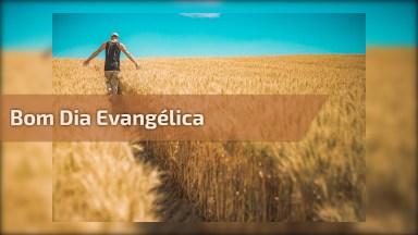 Mensagem Evangélica De Bom Dia, Para Enviar Através Do Whatsapp!