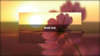 Vídeo Com Linda Mensagem De Bom Dia, A Música De Fundo É Mais Linda Ainda...