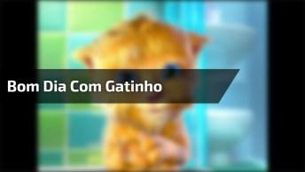 Vídeo Com Mensagem De Bom Dia Com Gatinho Lindo Cantando, Confira!