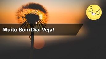 Vídeo Com Mensagem De Bom Dia Sexta-Feira, Para Amigos Do Whatsapp!