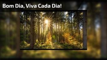 Vídeo Com Mensagem De Bom Dia, Viva Cada Dia Como Se Fosse O Ultimo!