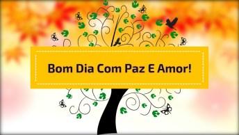 Vídeo Curto Para Desejar Bom Dia Para Seus Amigos Do Whatsapp!