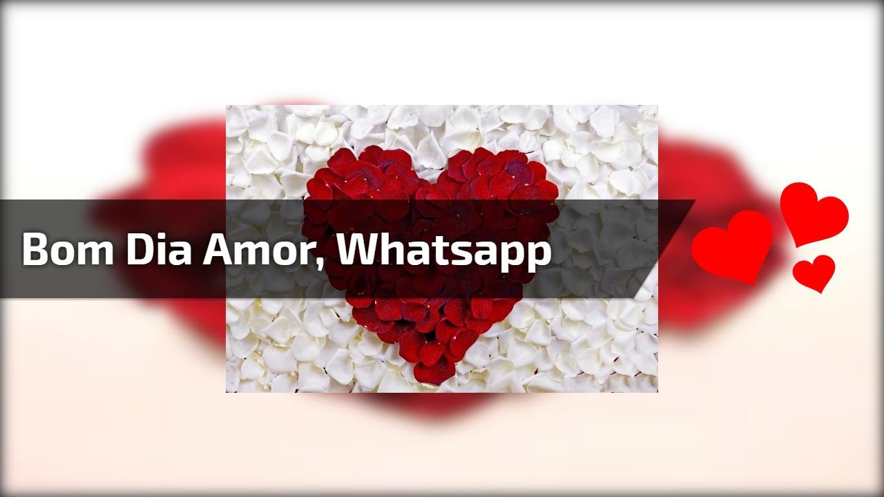 Vídeo de bom dia amor para Whatsapp, com coração feito de pétalas de rosa!