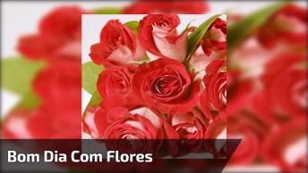 Video De Bom Dia Com Flores, Para Perfumar A Manhã De Seus Amigos!
