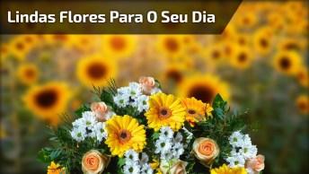 Vídeo De Bom Dia Com Lindas Flores De Fundo, Para Enviar Para Família!