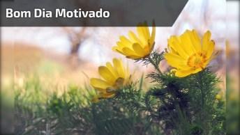 Vídeo De Bom Dia Com Lindas Mensagens E Imagens De Motivação!