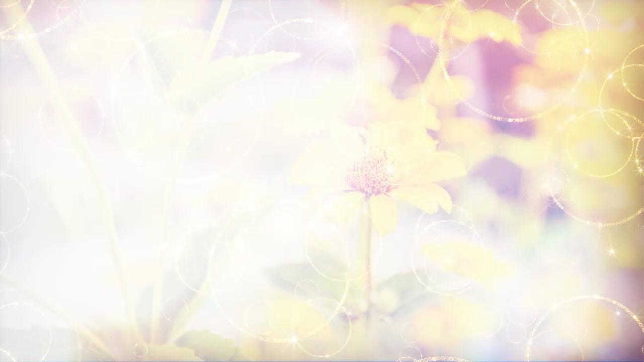 Vídeo de Bom Dia com mensagem de agradecimento a Deus