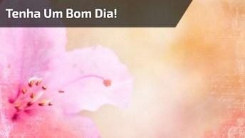 Vídeo De Bom Dia Com Mensagem E Café Com Leite, Para Compartilhar No Facebook!