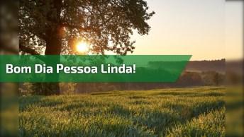 Vídeo De Bom Dia Com Mensagem Para Refletir. Bom Dia Pessoa Linda!