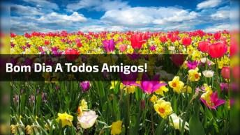 Vídeo De Bom Dia Com Mensagem Que Deus Guie Seus Passos Hoje E Sempre!