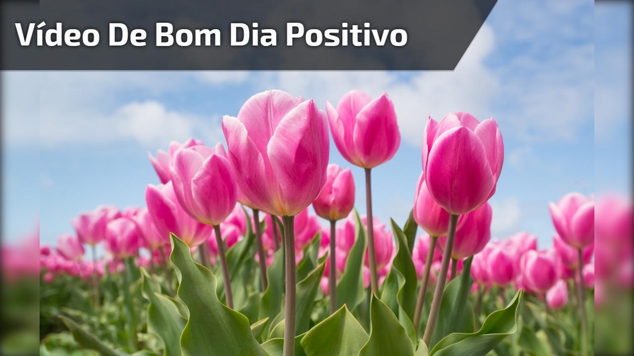 Vídeo de bom dia positivo