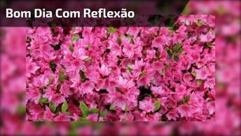 Vídeo De Bom Dia Com Reflexão, Exclusivo Para Facebook E Whatsapp!