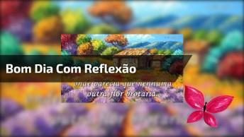 Vídeo De Bom Dia Com Reflexão, Para Compartilhar No Facebook!