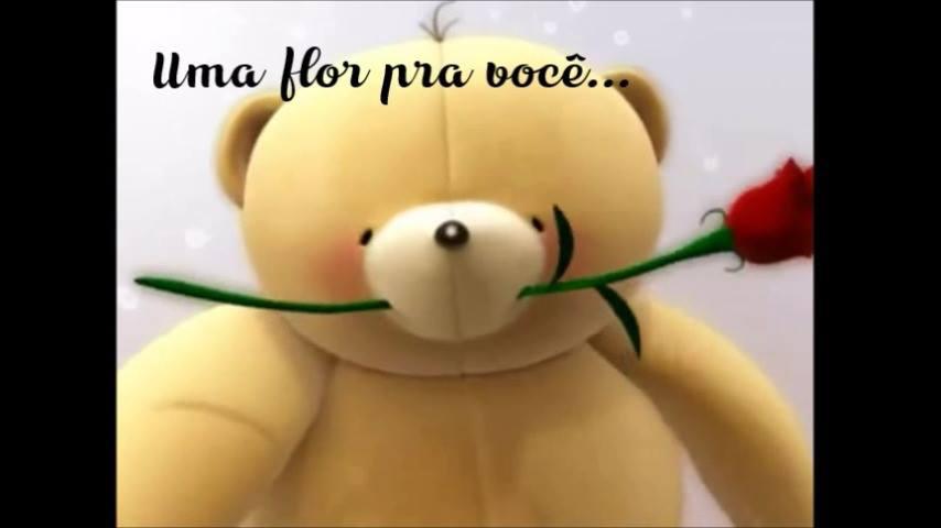 Vídeo De Bom Dia Com Uma Flor E Carinho Para Alguém