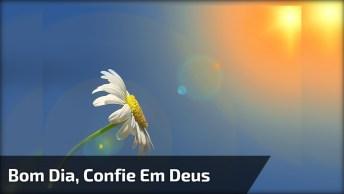 Vídeo De Bom Dia Para Compartilhar Com Todos Seus Amigos E Amigas Do Facebook!