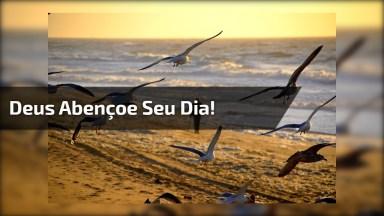 Vídeo De Bom Dia Para Enviar Aos Amigos E Amigas! Deus Abençoe Seu Dia!