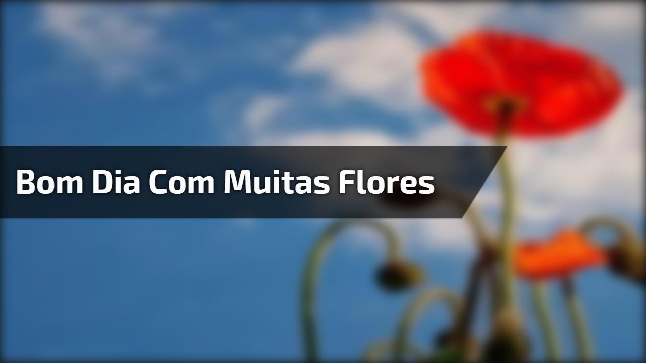 Vídeo de bom dia para Facebook, com muitas flores e cores!!!