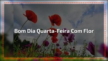 Vídeo De Bom Dia Quarta-Feira Com Flores Lindas, Compartilhe No Facebook!