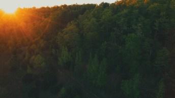 Vídeo De Bom Dia Segunda-Feira, Com Mensagem De Jeová! Tenha Um Abençoado Dia!